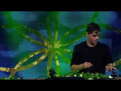 Tomorrowland Whatsapp Video Story With Special Tune || Martin Garrix Animal whatsapp Video status