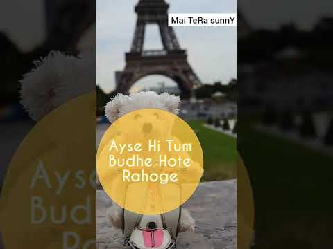 Kek Sher Hoto Phir Bulavo Ji | happy birthday full screen whatsapp status | Swag Video Status