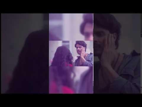 Pinjra gurzanar new full screen whatsapp status | Swag Video Status