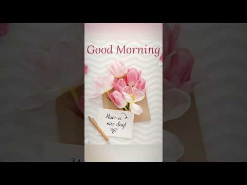Good morning whatsapp status | Full Screen Whatsapp Status | Tu Hi Meri Duniya Jahan Ve | Swag Video Status