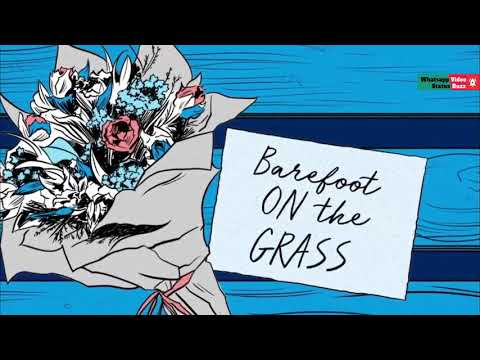Barefoot on the grass | Perfect by Ed Sheeran English Romantic whatsapp status | Download lyrical whatsapp status video | Swag Video Status