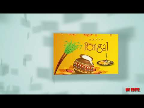 Happy pongal 2019 whatsapp status | tamil Whatsapp Status | Swag Video Status