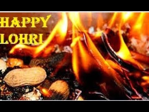 Happy Lohri & Makar Sankranti 2019 New whatsapp Status | Swag Video Status