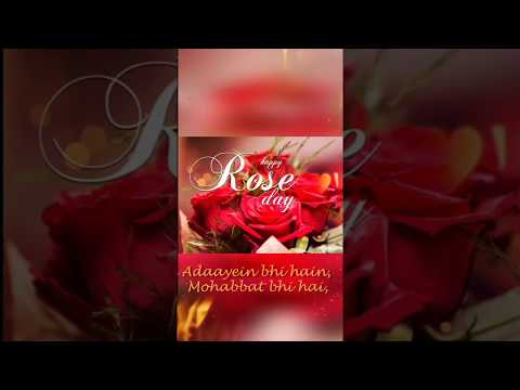 Female Version - Happy Rose day 2019 Whatsapp Status Video 7th Feb 2019 | Addayebhi hai | Swag Video Status