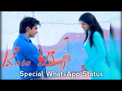 Rose Day Special !! Tu Jahaan Main Wahaan !! Whatsapp Status Video | Swag Video Status