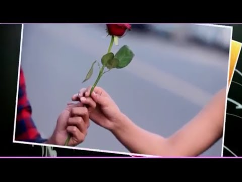 Rose Day Special Whatsapp status video 2019 | Rose day celebration Whatsapp status Video | Swag Video Status