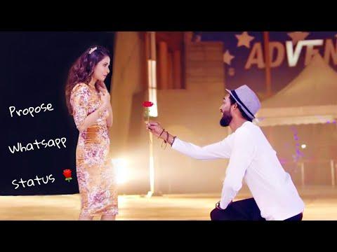 New whatsapp status video | Propose status | Cute Couples | Love status  | Swag Video Status