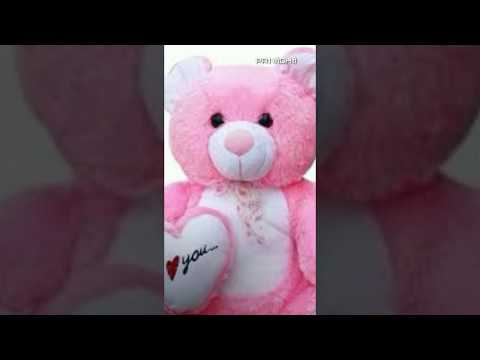 Janu do you love me full screen status |teddy Bear|New one | Swag Video Status