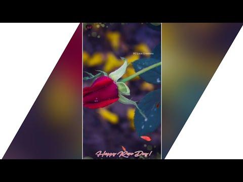 Rose Day Special | Khali Khali Dil | Full Screen Status | Rose Day 2019 | Swag Video Status
