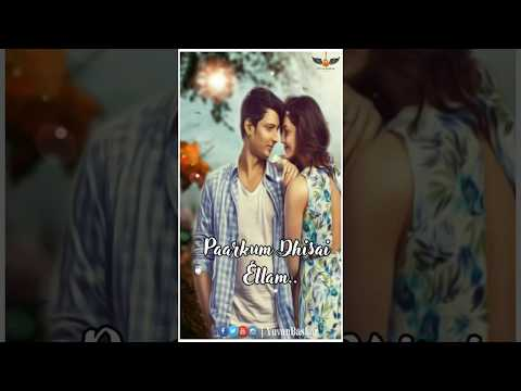 Nee Tholaindhaayo || Whatsapp Status | Swag Video Status