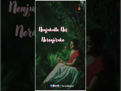 Nenjukulla Nee Neranjiruka Female Version || Whatsapp Status | Swag Video Status