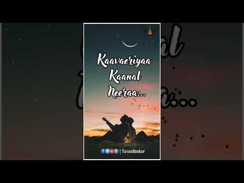Nilaavae Vaa Sellaadhae Vaa || Whatsapp Status |Haricharan | Swag Video Status