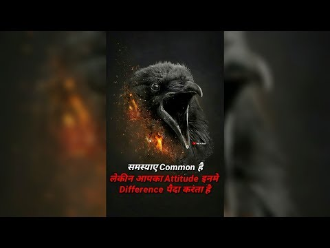 बाज़ 🐦/FullScreen Motivational😇 Dialogue Whatsapp Status 👌 | Swag Video Status