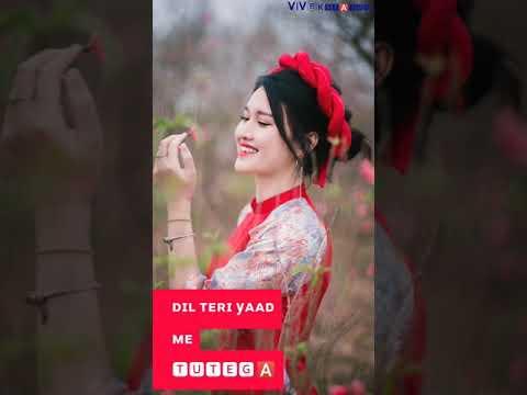 Jitne Dhoke Mile Yaar Ne -Tera Time | Haryanvi Attitude | Full Screen Whatsapp Status Video | Swag Video Status
