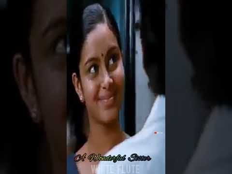 🙎Happy Women's Day 2019 || Mash-up🦋 || Full Screen 💚Whatsapp Status Tamil || White Flute 💕 | Swag Video Status