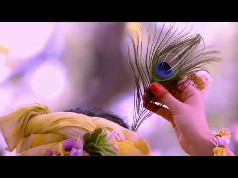 Radhakrishna|Radhaji ne krishna ko lagaya morpankh| Whatsapp status
