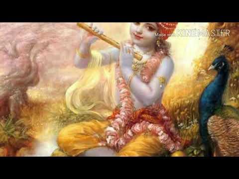 Radhe Krishna Milan WhatsApp Status 2019|Swag Video Status