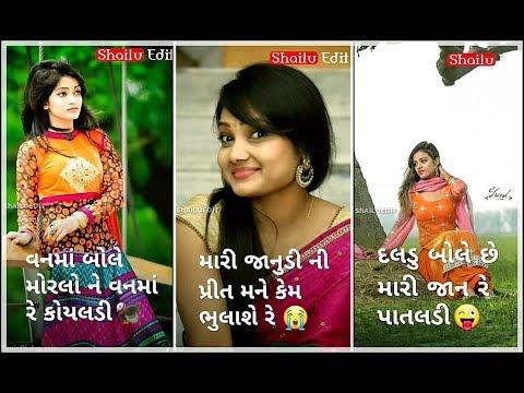 વન માં બોલે મોરલા ને વન માં રે કોયલડી | New Gujarati full screen love status | Swag Video Status