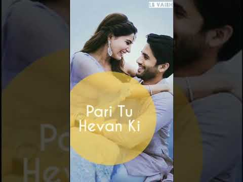 mene tujko dekha teri or dil feka status || whatsapp status || full screen video | Swag Video Status