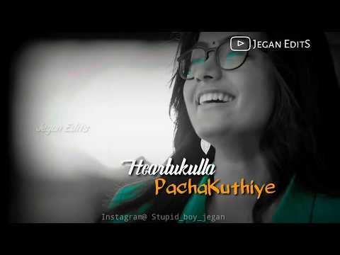 Heartukulla Pachakuthiye💞Rashmiga Version❣️ Swag Video Status
