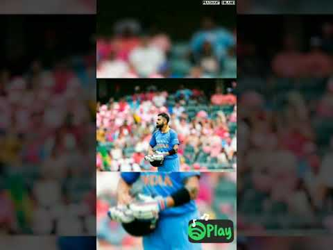 World Cup 2019 Song Full Screen Status || Crown Cricket Ka Madam Ji Hum Le Jayega || Swag Video Status