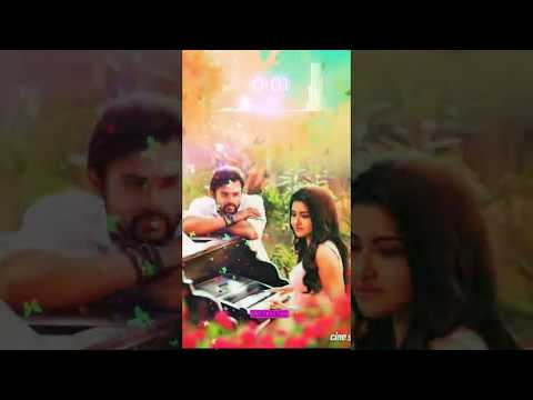 Chashni Whatsapp Status 😘 Bharat Whatsapp Status 😍 New Romantic Status 😘 Full screen Trending 😘 Swag Video Status