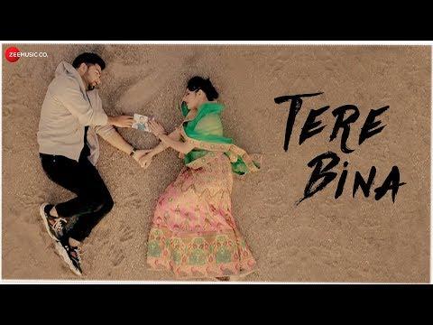 Tere Bina - Whatsapp Status | Bismil | Jannat Zubair Rahmani|Swag Video Status