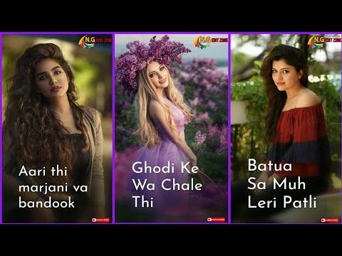 New Tiktok Trending Song | Aari thi marjani va bandook banke |Full Screen Status2019 |Swag Video Status