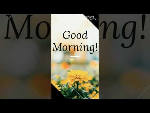Full Screen Good Morning whatsapp status | Swag Video Status