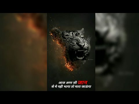 शेर/Best Motivational😇Dialogue Ever/FullScreen Motivational Dialogue Whatsapp Status 👌Swag Video Status