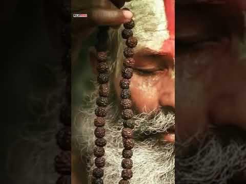 Shivay om namah shivay | Sravan Special Whatsapp status | Swag Video status