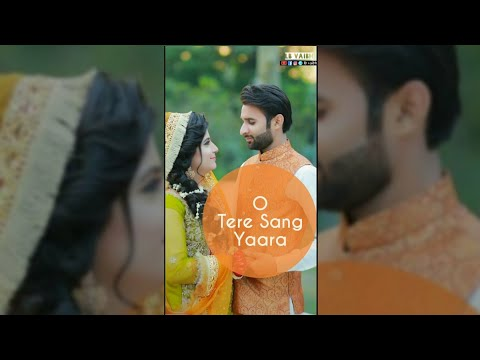 Tere sang yara full screen status | Swag Video Status