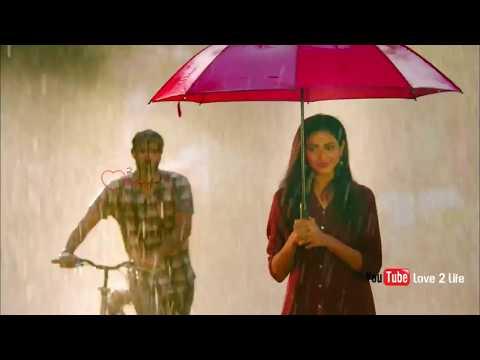Pookalukulle Then Ulla Varaiyil Kaathalar Vaazhga..!! | Tamil whatsapp status video | Swag Video Status